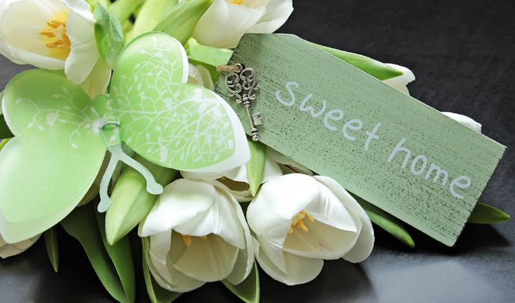 weisse-blume-sweet-home_750x442.jpg