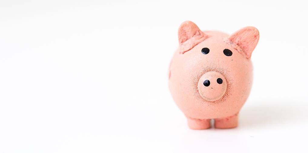 ratgeber-finanzen-schweinchen_1017x508.jpg